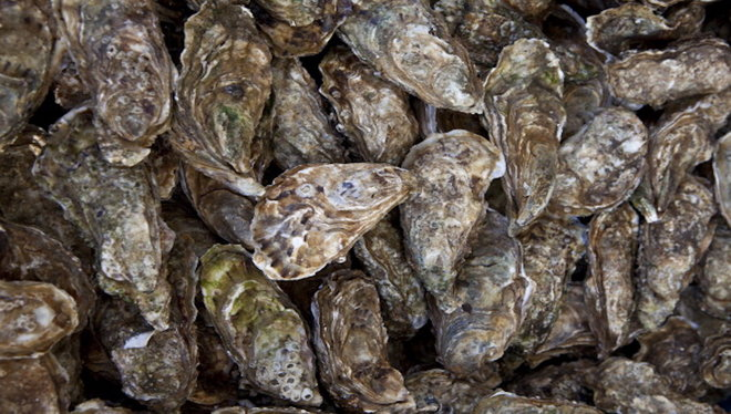 Food & Wine: China, Denmark oysters