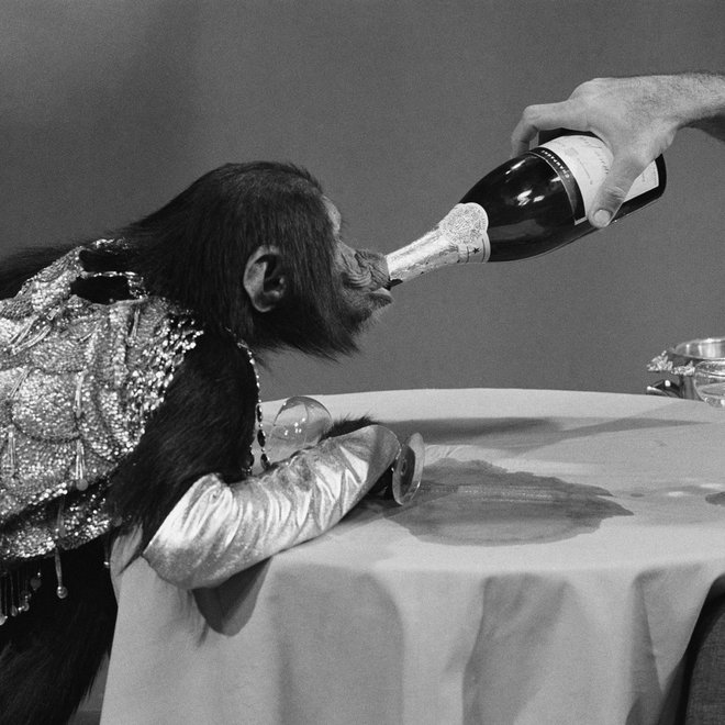 FWX CHAMPAGNE IS GOOD FOR YOU