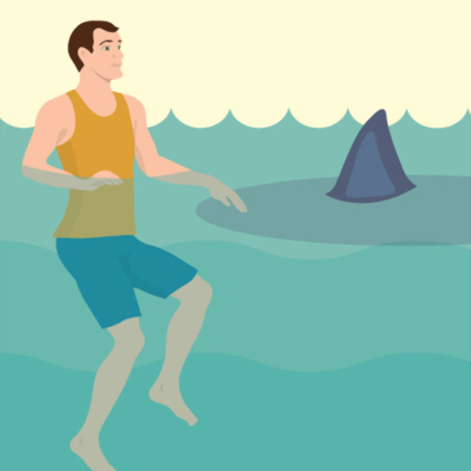 FWX PARTNER FIX HOW TO AVOID A SHARK ATTACK