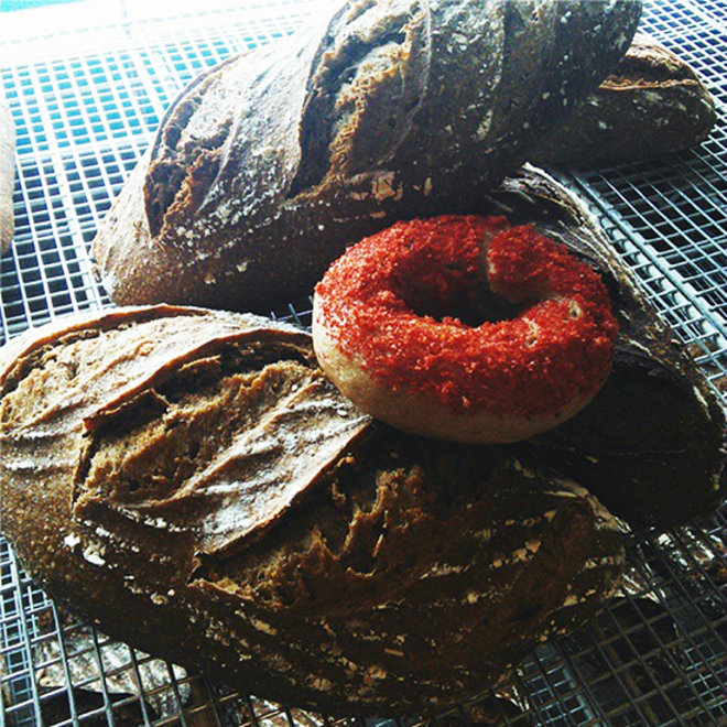 FWX RED BAGEL