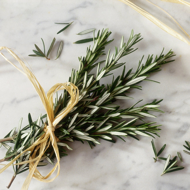 FWX ROSEMARY HEALTH BENEFITS