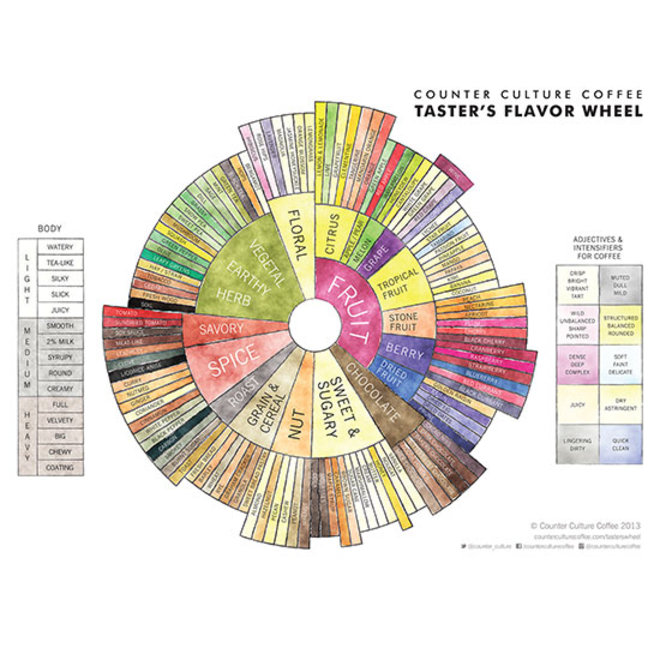 Food & Wine: Counter Culture Coffee Taster's Flavor Wheel.