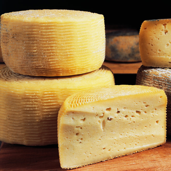 HUGE WHEEL OF CHEESE IN WHITE HOUSE FWX