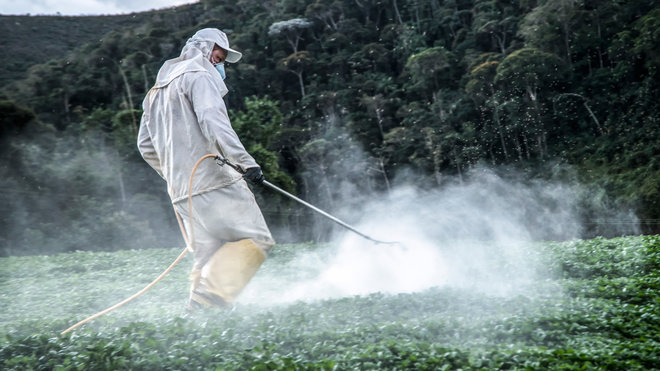 Insecticides Could Increase Diabetes Risk