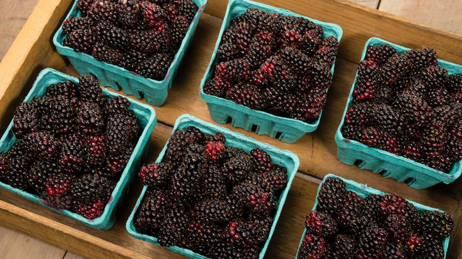 Food & Wine: Oregon Marionberry Mania