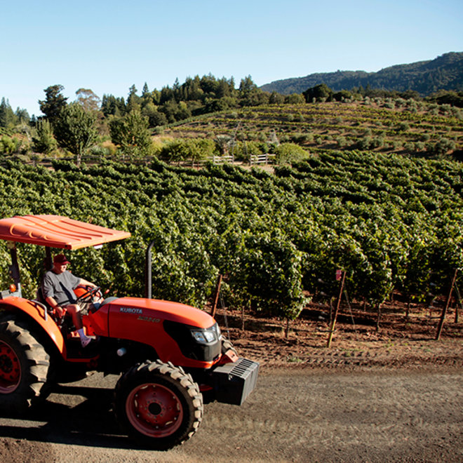 Food & Wine: Sonoma Goes (Even More) Green