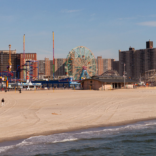 Food & Wine: Why Brighton Beach Is One of the World's Best Places to Write a Cookbook