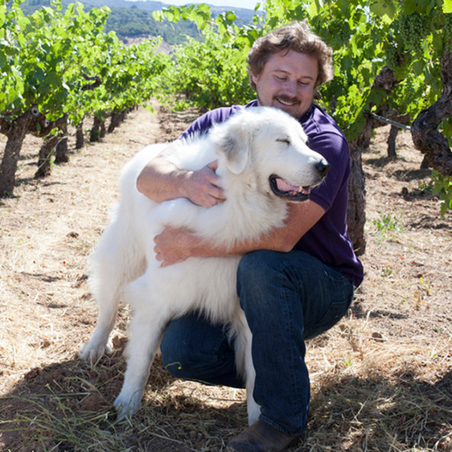 Food & Wine: Meet the Cutest Winery Pets Ever
