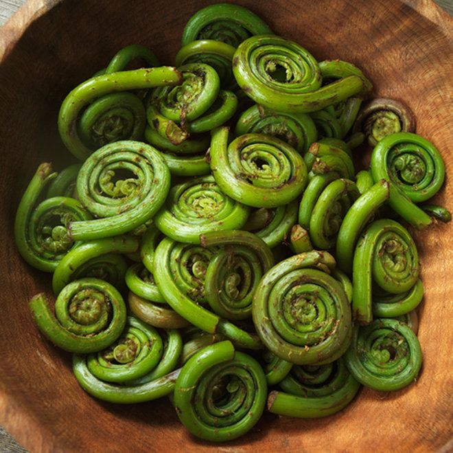 Food & Wine: Everything You Need to Know About Fiddlehead Ferns