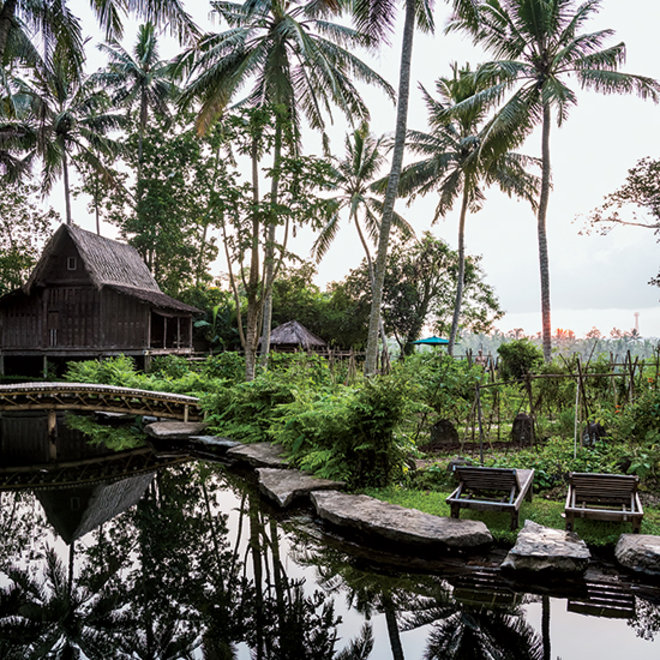 Food & Wine: 5 Luxurious Bali Resorts