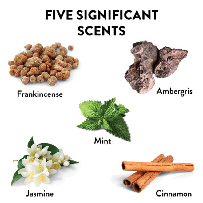 Food & Wine: The 5 Most Important Scents in the World