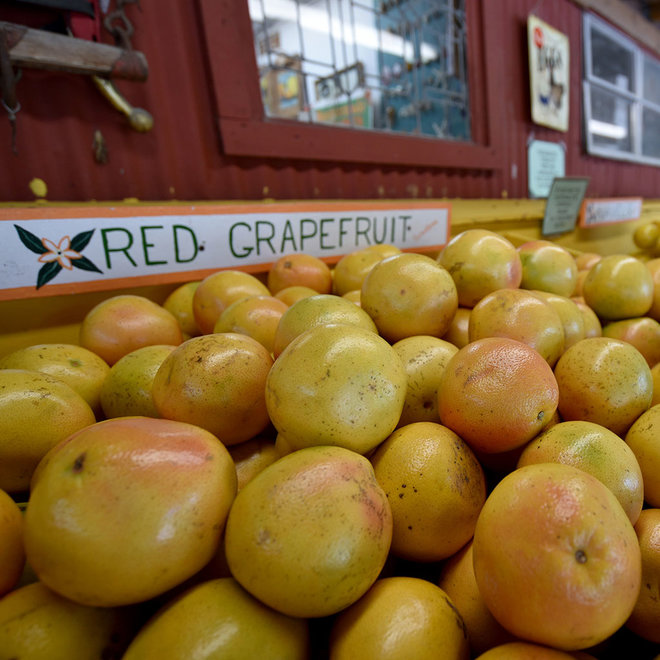 TRADE GRAPEFRUIT FOR BEER FWX