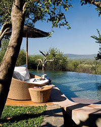 Food & Wine: At Molori Safari Lodge & Spa, guests can spot big game from the back of a jeep or relax poolside.