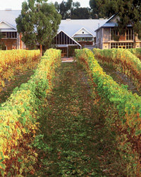 Food & Wine: Cloudy Bay, in New Zealand's Marlborough, makes stellar Sauvignon Blancs. Photo courtesy of Cloudy Bay.