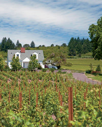Food & Wine: Where To Stay in Wine Country