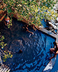 Food & Wine: A plunge pool at the Ladera resort.