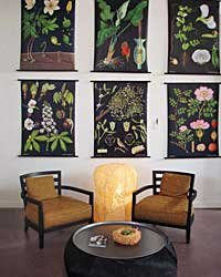 "Food & Wine: German botanical drawings from the 1800s are reprinted on canvas ($280). The handmade Italian ""Louise"" chairs have removable slipcovers ($1,700)."
