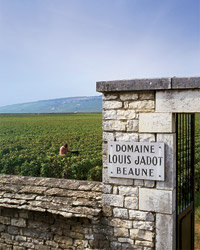 Food & Wine: The World's Most Trustworthy Wineries