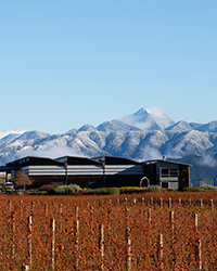 Food & Wine: New Zealand Wine Producers We Love
