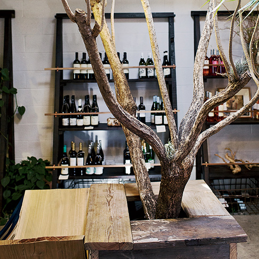 Food & Wine: One-Stop Shopping for Organic Wines and Cool Houseplants