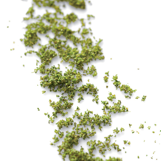 Food & Wine: Rosemary Dust