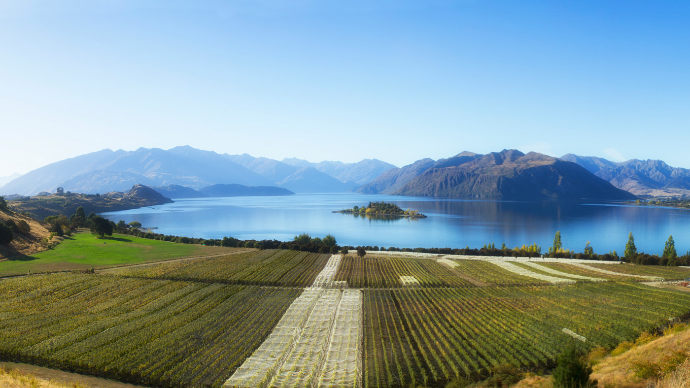 A Weekend Guide To New Zealand S Wine Country Food Amp Wine