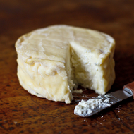 Food & Wine: Best Artisanal Cheese