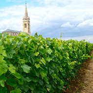 Food & Wine: 9 Vacations Every Wine Lover Should Add to Their Bucket List