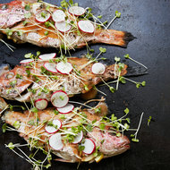 Food & Wine: Asian-Style Grilled Whole Red Snapper with Radish Salad