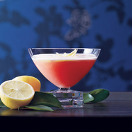 Food & Wine: Campari Cocktails