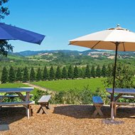 Food & Wine: 12 Best Sonoma Wineries With Beautiful Views