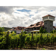 Food & Wine: 5 Must-See Wine Destinations