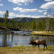 Food & Wine: America's National Parks: The Insider's Travel Guide
