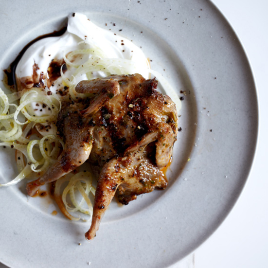 Grilled Spiced Quail with Shaved Fennel & Yogurt