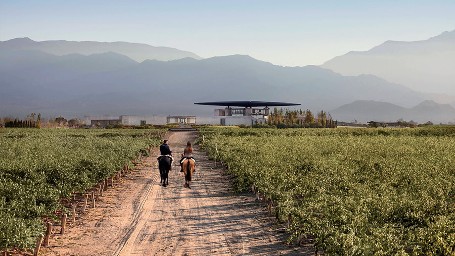 Food & Wine: A Weekend Guide to Mendoza