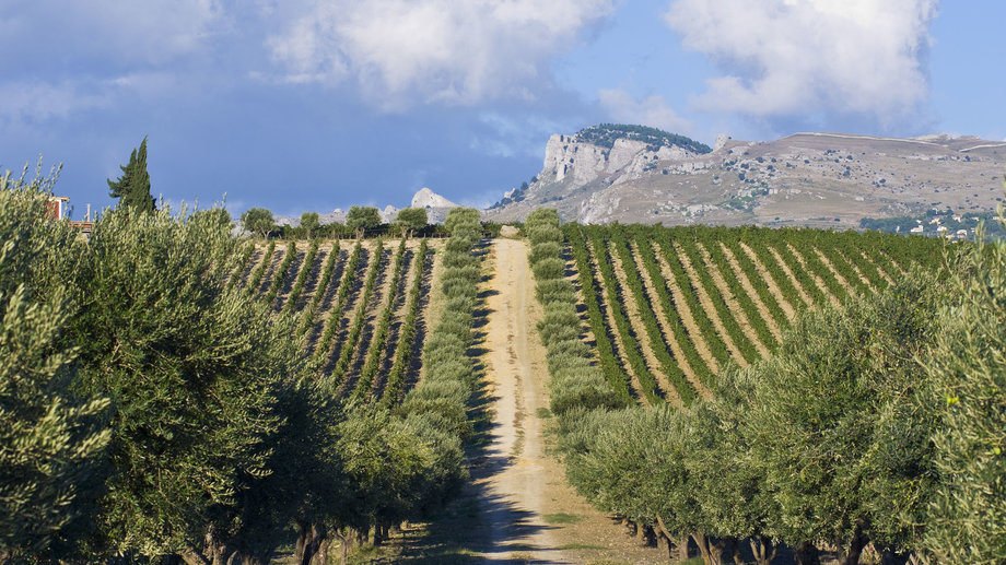Food & Wine: 7 Bottles that Put Sicily on the Map of Trendy Wine Regions