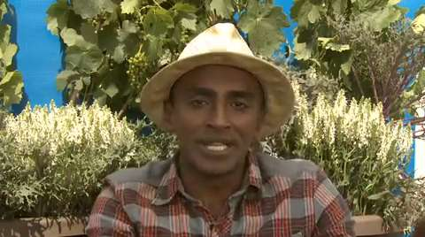 Marcus Samuelsson: Fast Side Dishes