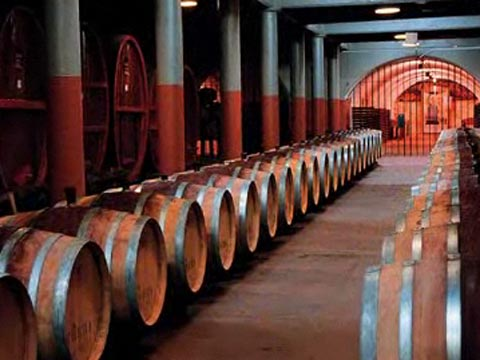 Behind Penfolds